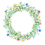 Garland with meadow herbs and eucalyptus branches. Royalty Free Stock Photography