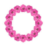 Garland of pink flowers Stock Image