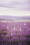 Garland with vases in shape of a light bulbs in a lavender field Royalty Free Stock Photo