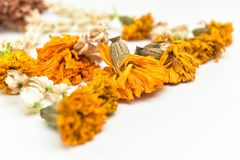 Dried marigold on a white background. Garlands with dried marigold situate on a white background stock photography