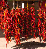 Garlands of dry red chilly peppers. In the market Stock Photography