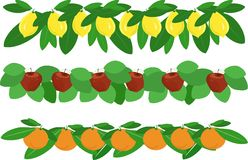 Garlands of lemons, apples, oranges and green leaves on white Royalty Free Stock Photos