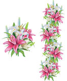 Garlands of lilies flowers Stock Photo