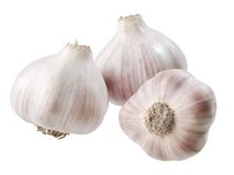 Garlic. Stock Photography