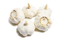 Garlic. On Isolated White Background Stock Image