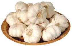 Garlic. S stock photography