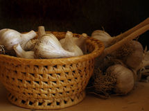 Garlic. Still life with small pottle and garlic against black stock images