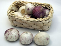Garlic. In the little basket on white bacground royalty free stock photo