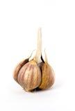 Garlic. Bulb isolated on white Royalty Free Stock Image
