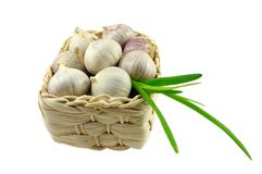 Garlic Stock Image