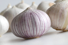 Garlic. A few garlic on white background Stock Images