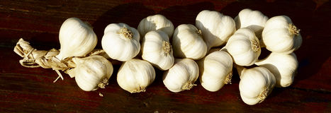 Garlic. Chain of garlic in wooden background Royalty Free Stock Image