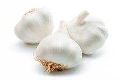Free Garlic Royalty Free Stock Image - 18441326