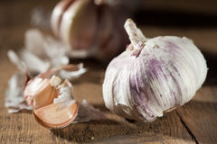 Garlic Stock Photos