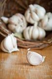 Garlic Royalty Free Stock Image