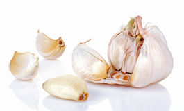 Free Garlic Royalty Free Stock Images - 19600389