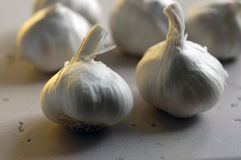 Garlic 2. Garlic bulbs on a marble surface in twilight royalty free stock photo