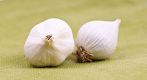 Garlic. On the green background Royalty Free Stock Photos