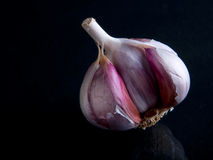 Garlic. Clove of garlic on the black background royalty free stock images
