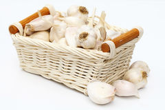 Garlic. Is the spice. Useful to the body stock photography