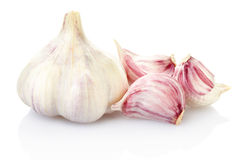 Free Garlic Stock Photography - 20433002