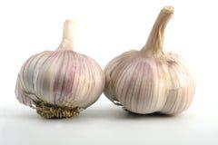 Free Garlic Royalty Free Stock Images - 222009