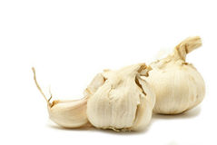 Garlic. Big garlic on white background Royalty Free Stock Photography