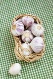 Garlic. Fresh garlic in the basket Stock Image