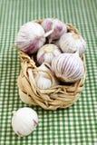 Garlic. Fresh garlic in the basket Stock Images