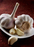 Garlic Stock Photo