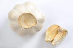 Garlic. On white background Royalty Free Stock Photography