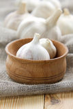Garlic Stock Photography