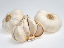 Garlic. On a white background Stock Photo