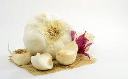 Garlic... Royalty Free Stock Photography