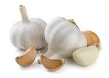 Free Garlic Royalty Free Stock Photography - 28022387