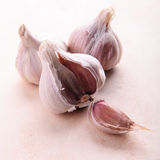 Garlic. Clove. Inrgedient for cooking stock images