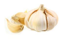 Garlic. Ingredeint of food on white background Stock Photos