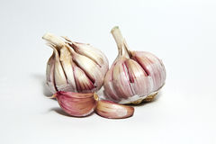 Garlic. Close shot of two heads of garlic on a white background Stock Images