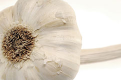 Garlic. Chan royalty free stock photo