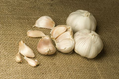 Garlic. On the linen fabric Royalty Free Stock Images