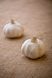 Garlic. Two full cloves of garlic on hessian stock photography