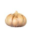 garlic fotografia de stock royalty free