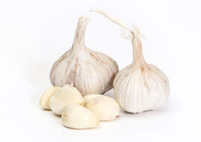 Garlic. On white with soft shadow Royalty Free Stock Photography