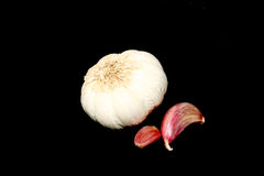 Garlic. Isolated on a black background Stock Photography