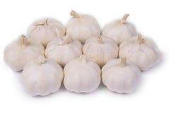 Garlic. Spicy garlic on white background stock images