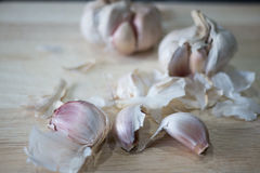 garlic Fotos de Stock