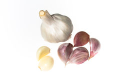 Garlic. Cloves in various stages Royalty Free Stock Image