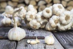 Free Garlic Royalty Free Stock Image - 79752646