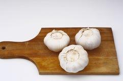 A garlic. Garlic on a plate Stock Image