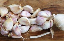 Free Garlic Royalty Free Stock Photos - 85791028